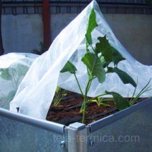 Brote de hortaliza cubierto del frio con tela térmica