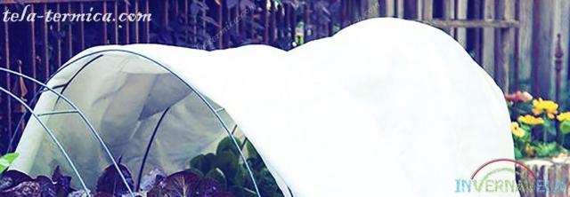 micro túnel invernavelo protegiendo cultivos contra las heladas y lluvias intensas
