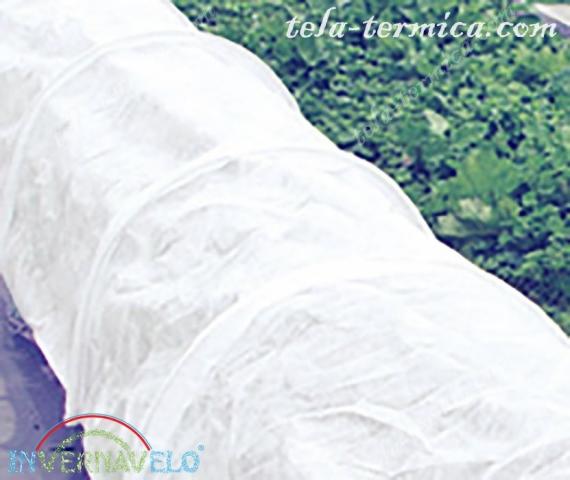 micro túnel utilizando la manta anti-heladas de Invernavelo.